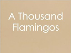 A Thousand Flamingos