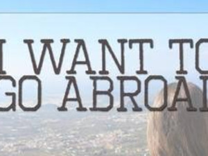 I want to work in abroad