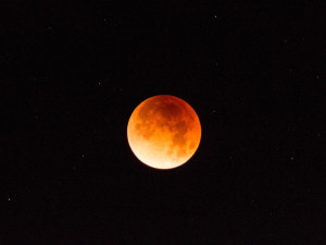 Blue Moon, Blood Moon & Eclipse!