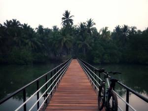 Cycling in Kodi Bengre