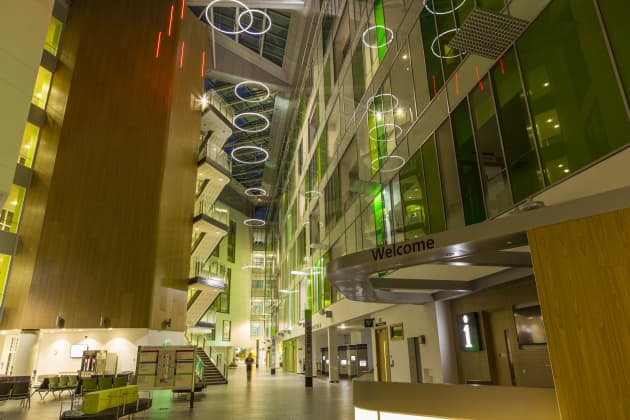 The public art programme for Southmead Hospital, Bristol, UK