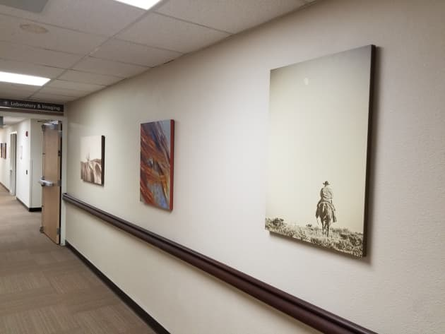 Memorial Hospital Remodel Interior Art