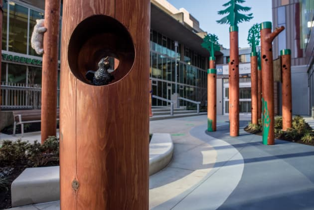 Flavelle Family Wellness Park  – BC Children's Hospital