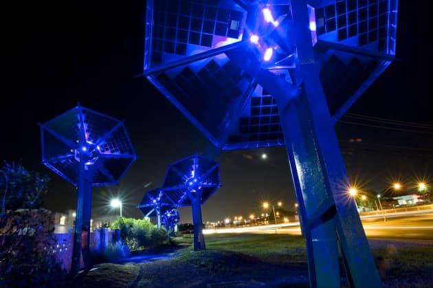 SunFlowers, an Electric Garden