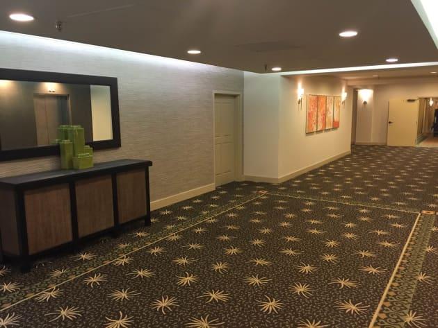 Tampa Westshore Hilton Lobby