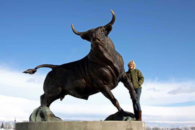 USU Bull
