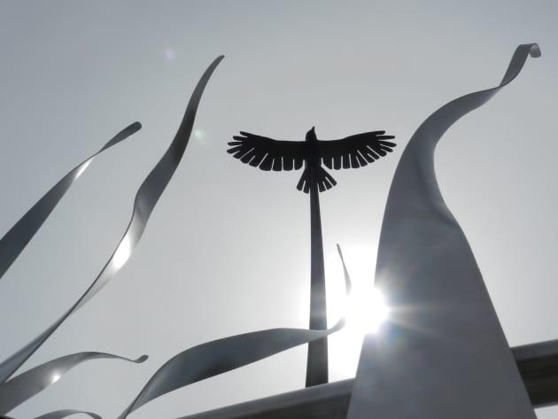 Soaring Bird: Peace through Service