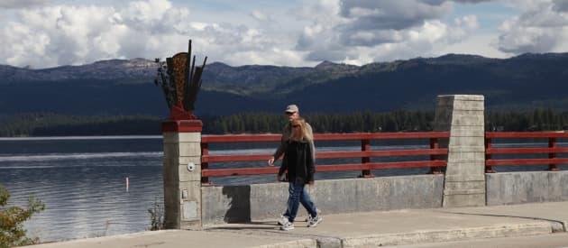 Lardo Bridge Public Art