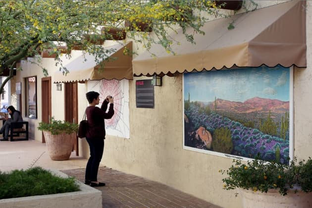 Waltzing in the Superstitions- The Arts at Marshall Square- IN FLUX Cycle 6