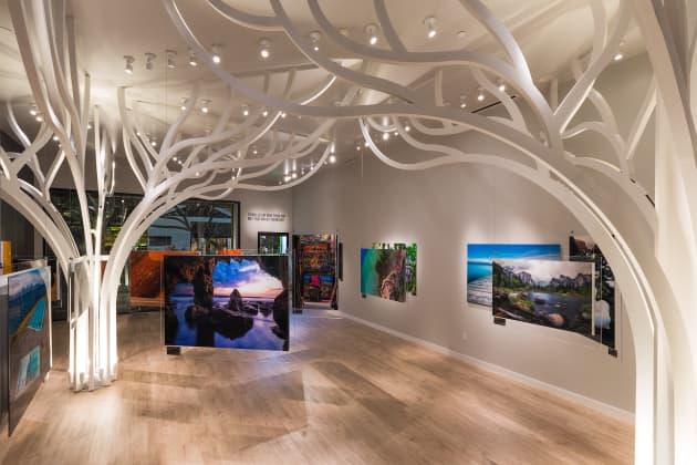 Andrei Duman Gallery