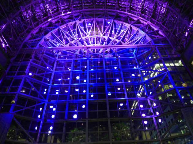 Light Cycles at the Winter Garden
