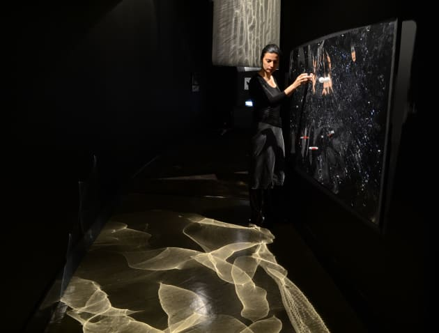 Interactive Magnetic Wall Reflector