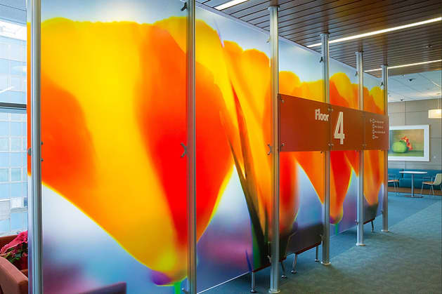 Kaiser Redwood City Medical Center: Phase 1 Lobby Dividers