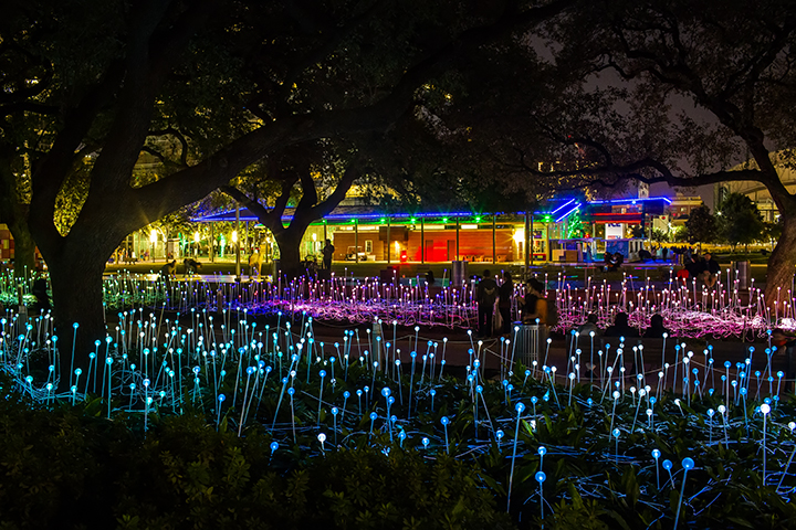 Bruce Munro's Field of Light at Discovery Green - CODAworx
