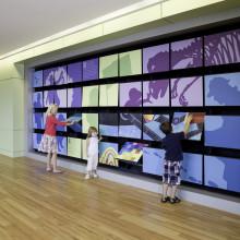 UVA Storytelling Walls