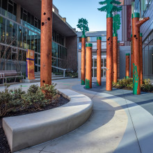 Flavelle Family Wellness Park  - BC Children's Hospital