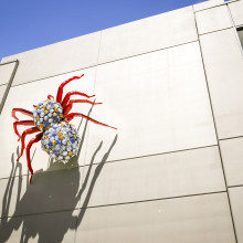 'Tarantula' | 4th Street Parking Garage