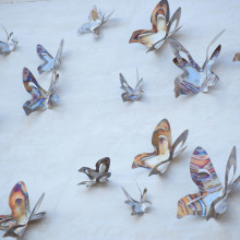 Butterflies for Peace