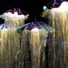 Jellyfish 3060