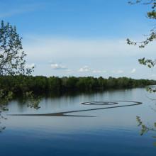 Spiral Wetland