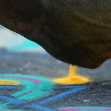 NYScenes - Joe Mangrum, Sand Painter