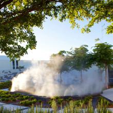 Miami Healing Garden