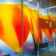 Kaiser Redwood City Medical Center: Phase 1 Lobby Dividers