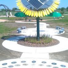 Solar Sunflower Calendar Garden