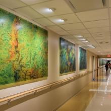 Medical Center Lobby
