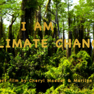 Miami New Media Festival-Water, Heritage & Climate Change