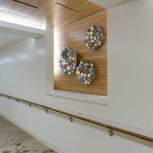 Long Island Jewish Hospital