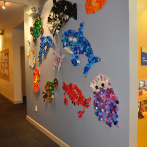 Sea Animals Installation