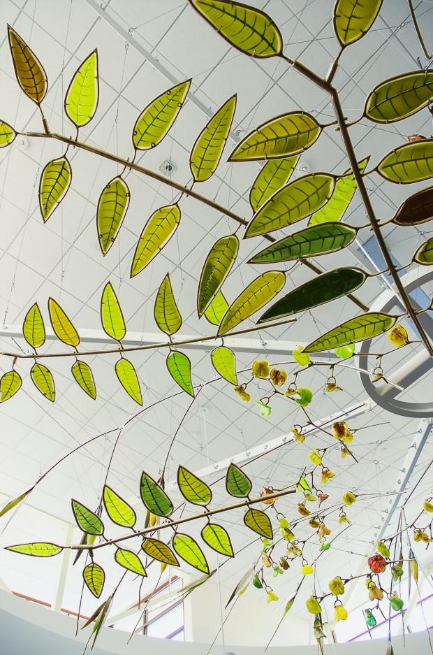 Web of Native Botanicals