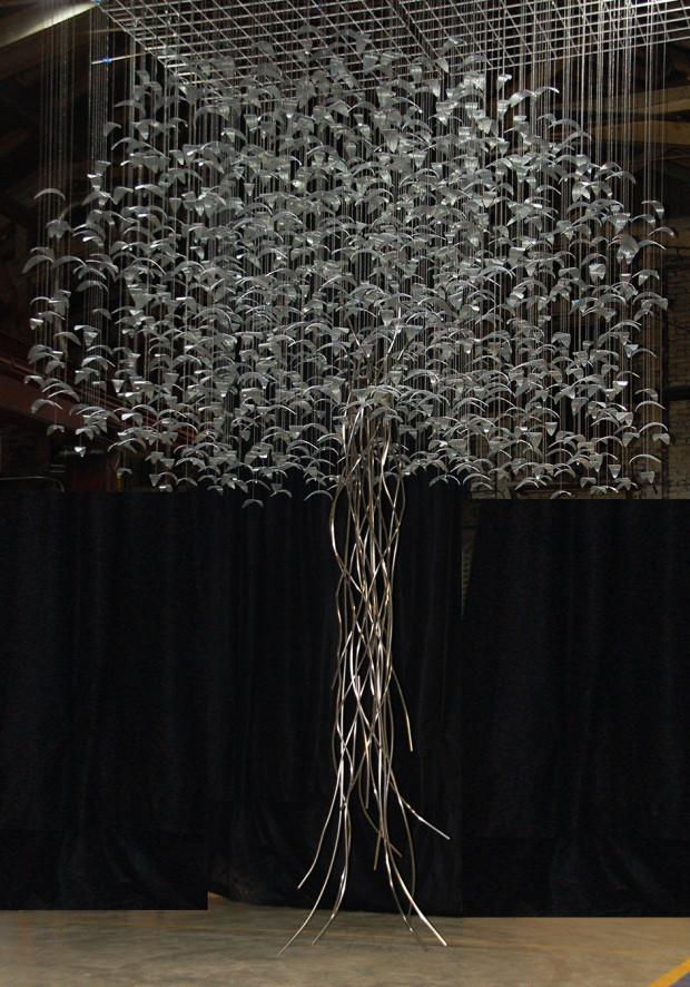 Ghaf Tree