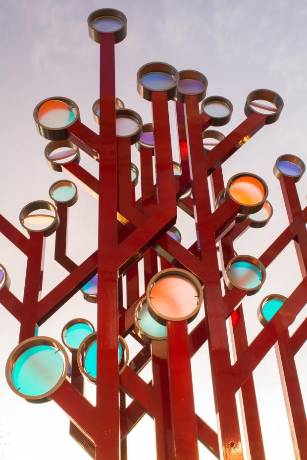 Illuminated Arboreal Data Codes