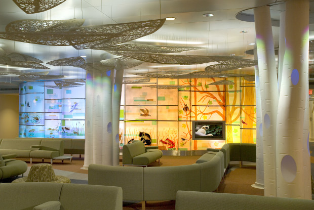 Project: MAYO CLINIC HEALTH SYSTEM, T  Denny Sanford Pediatric