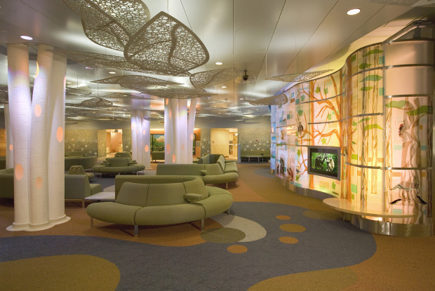 Project: MAYO CLINIC HEALTH SYSTEM, T  Denny Sanford