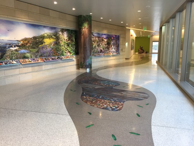 Project: Lucile Packard Children Hospital Art Collection - CODAworx