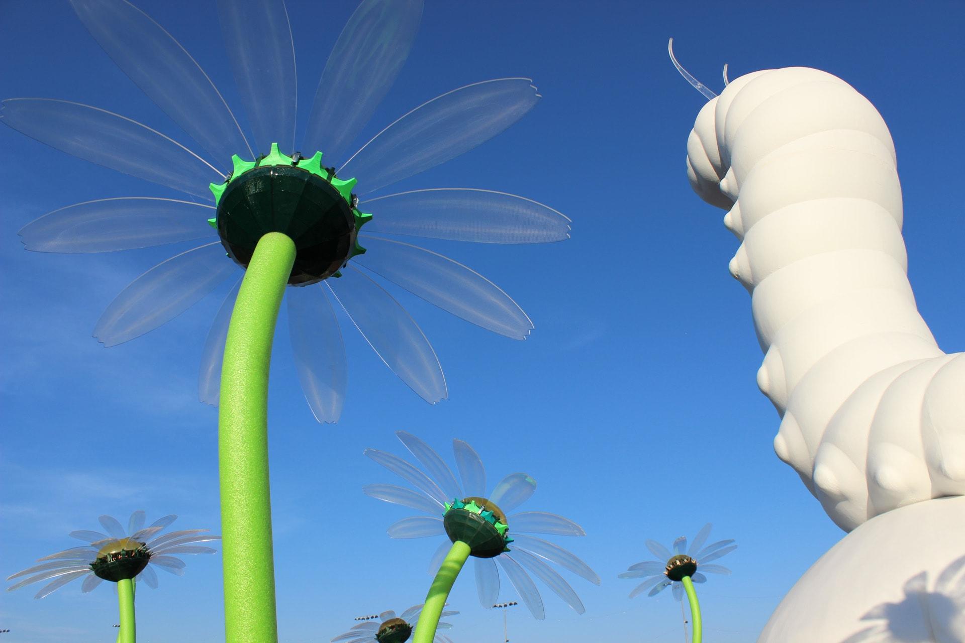 EDC Caterpillar / Caterpillar's Garden