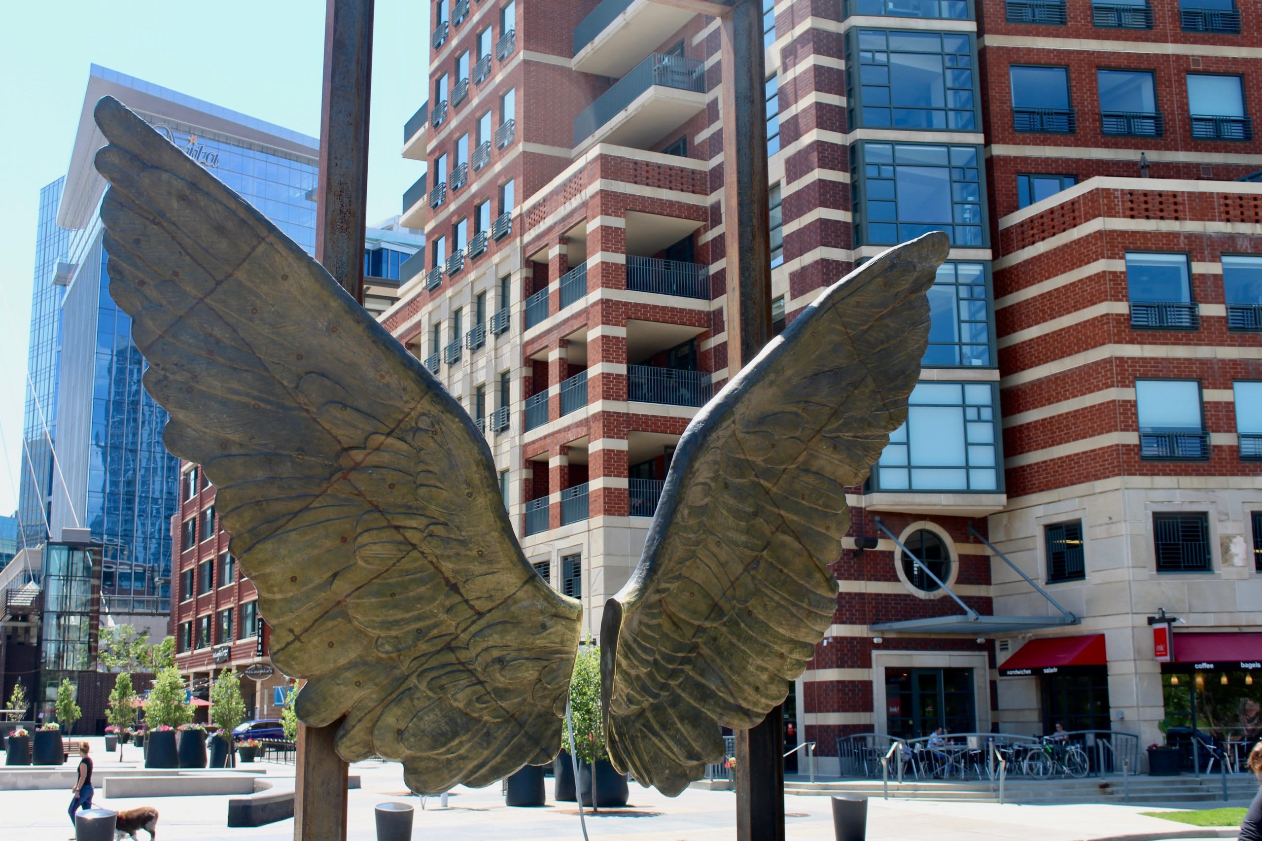 Wings of the City