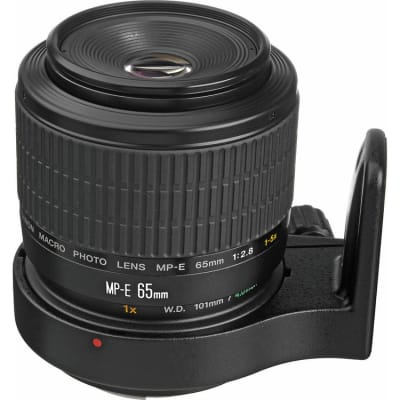 CANON MACRO PHOTO LENS MP-E65 F/2.8 1-5X