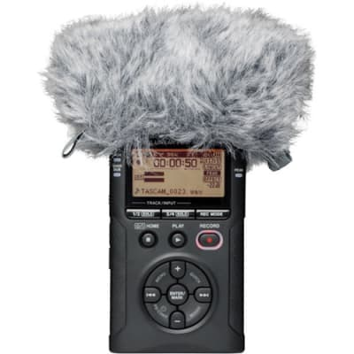 TASCAM WS-11 -WINDSCREEN FOR DR SERIES HANDHELD RECORDERS