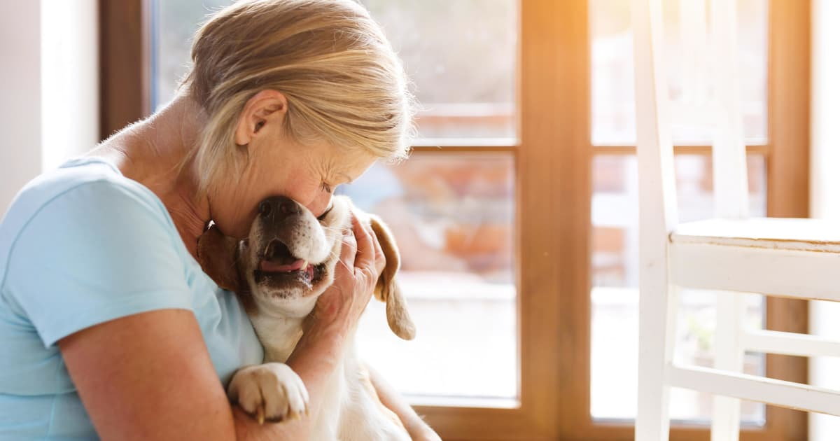 POLL: What Comforts You MOST When Grieving The Death Of A Pet?