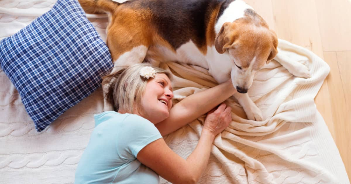 POLL: Best Way To Cope With Death Of A Pet?