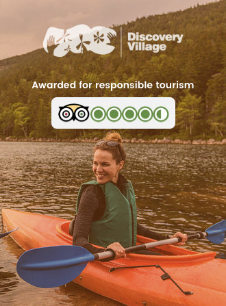 codewave travel website casestudy: discovery village - leisure and lifestyle, stay booking site