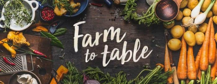 Farm_to_table_blockchain_technology_for_agriculture_business_application_and_use_cases_of_blockchain_in_agriculture_for_farmers_and_agritech