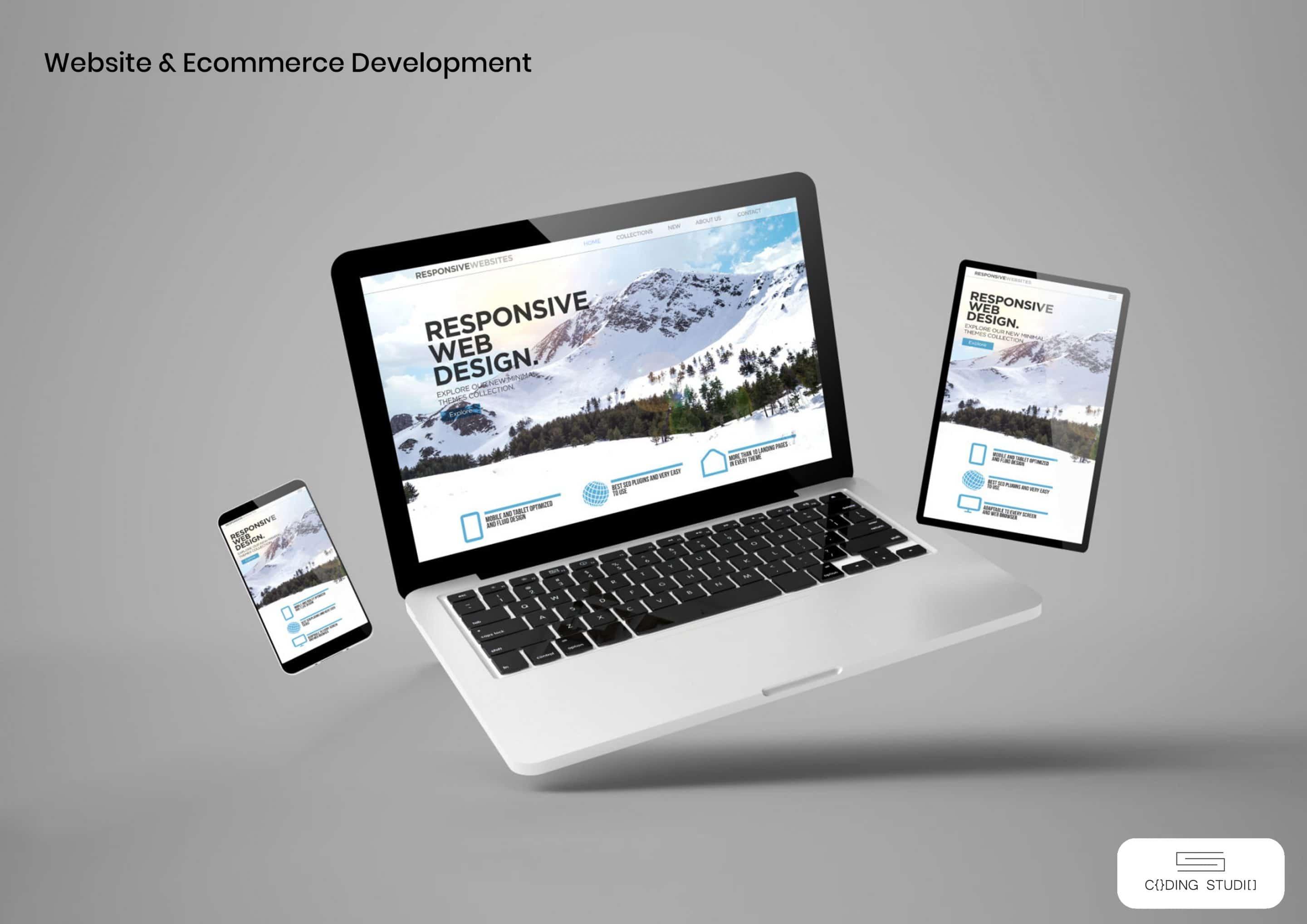 Custom Software Development In Johor Malaysia