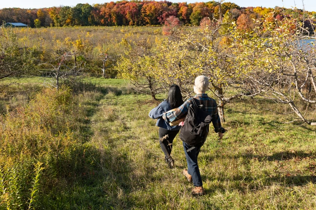 Two backpackers in an apple orchard walkiing.