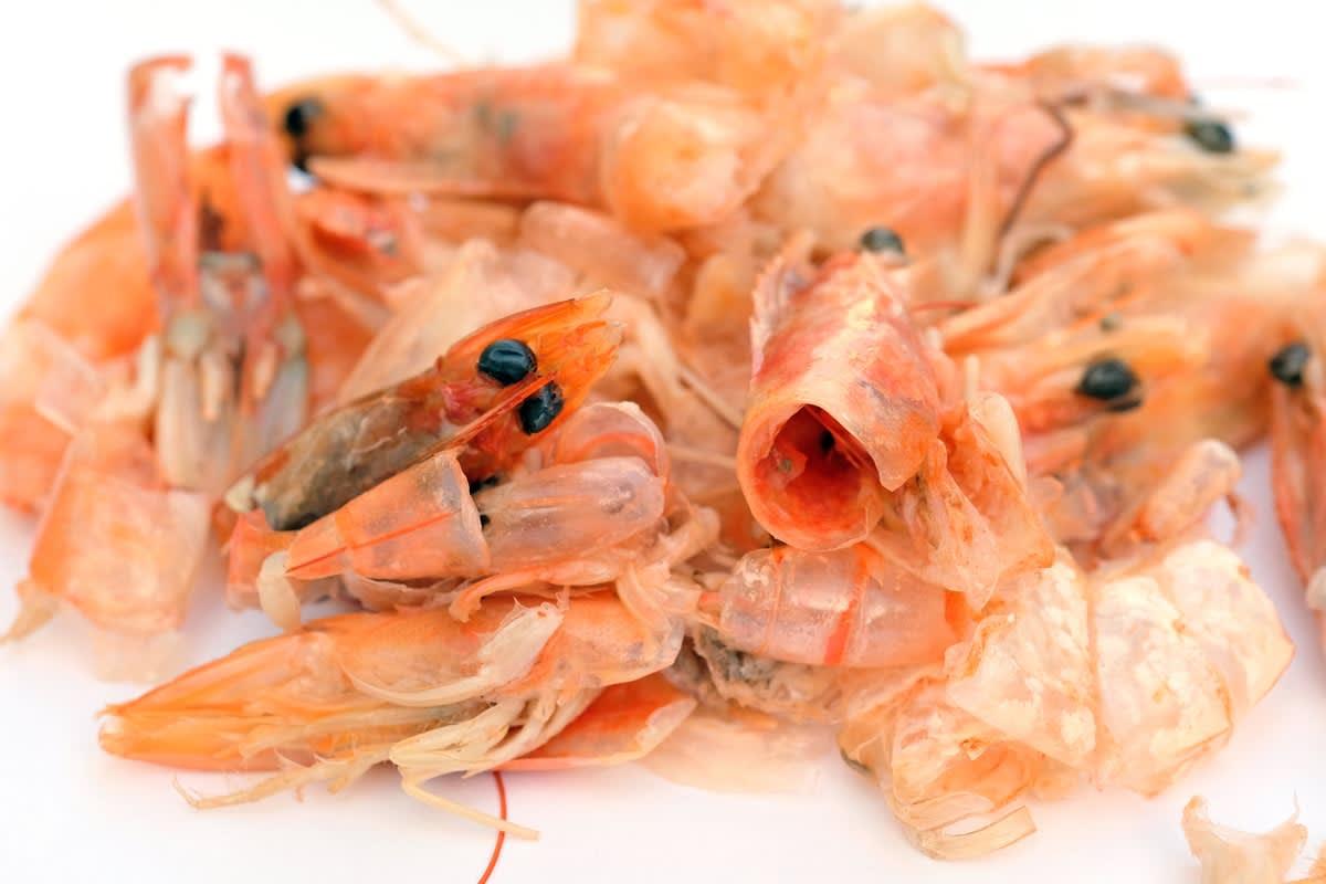 A pile of prawn shells
