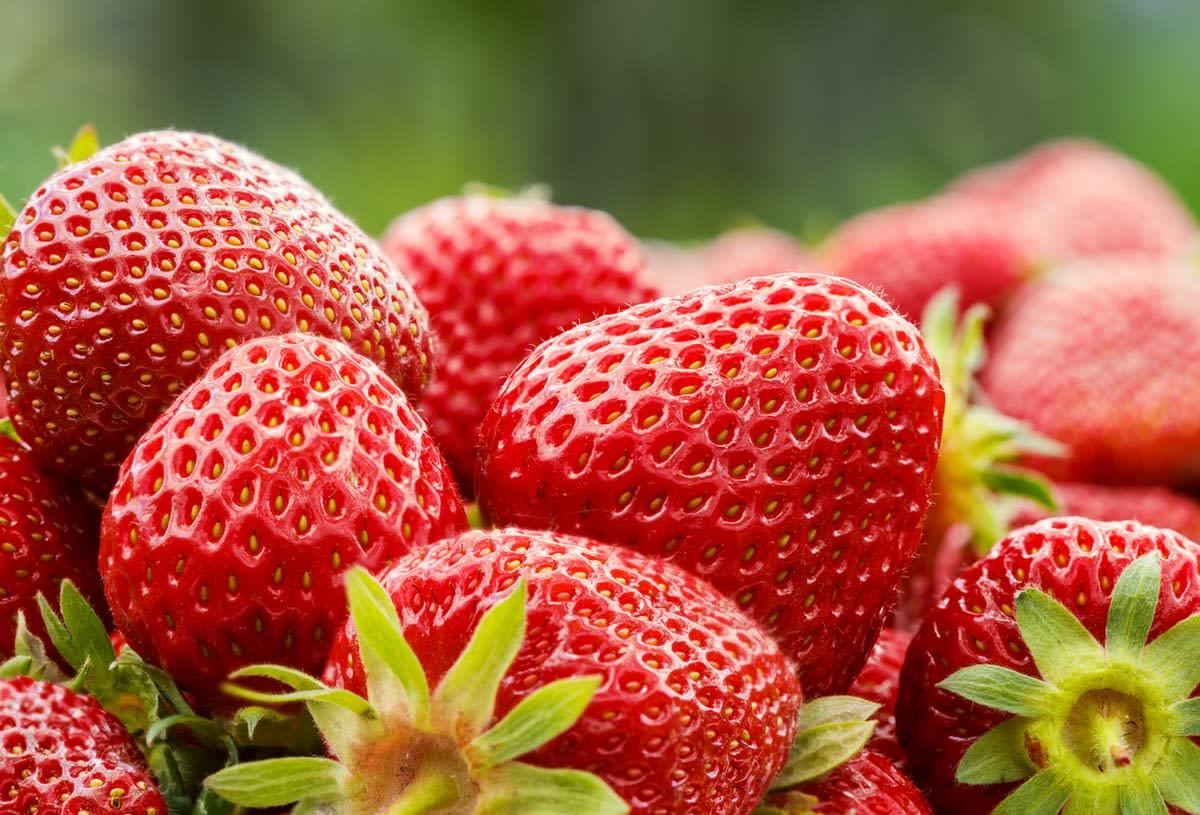 Close-up of ripe strawberries